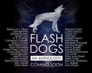 flashdogspromo