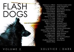 Solstice Dark writers